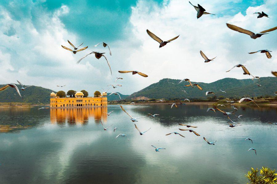 Jal Mahal, Rajasthan