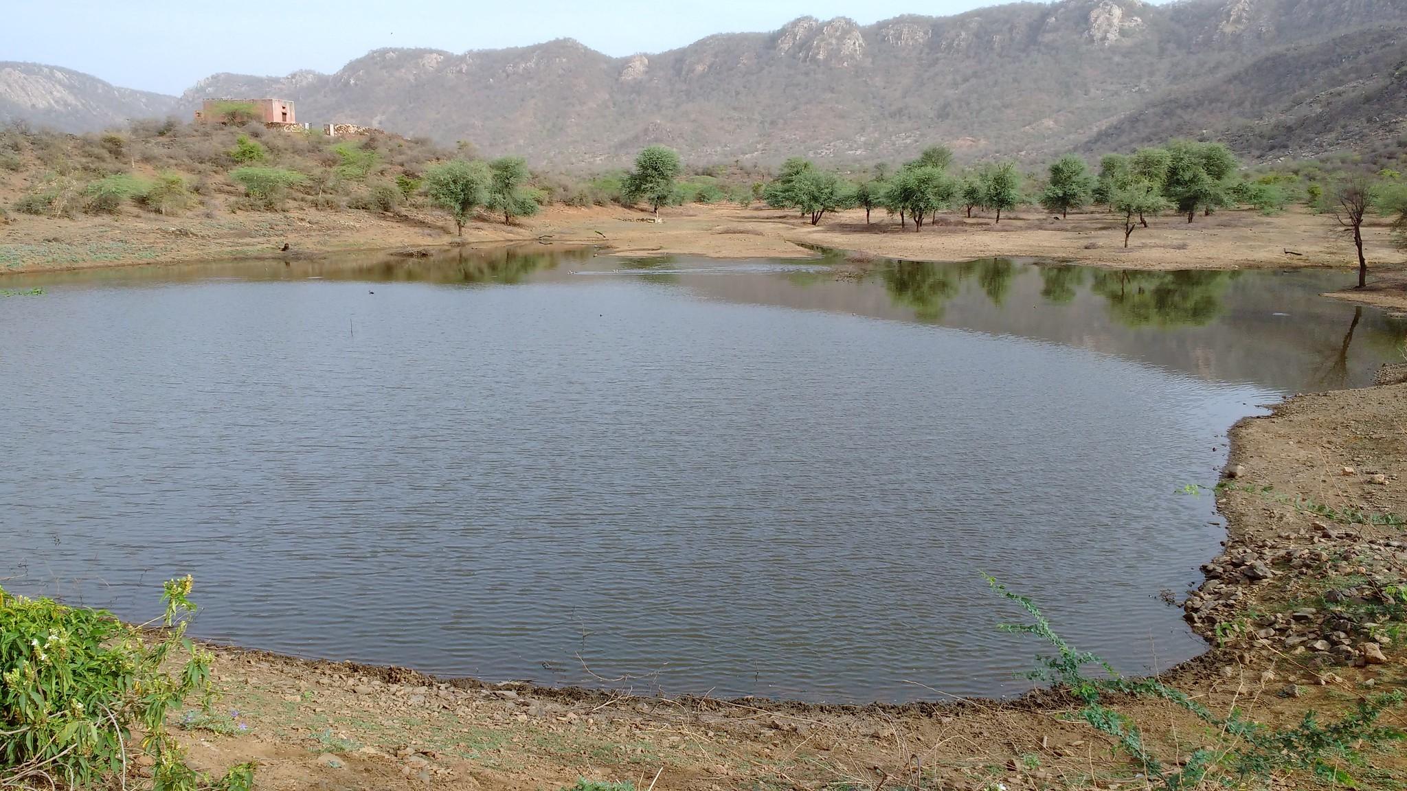 Johads of Rajasthan